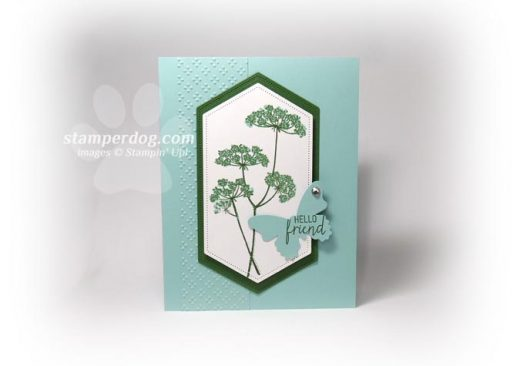 Queen Anne's Lace flower card