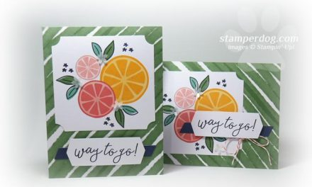Time Saving CardMaking Kits