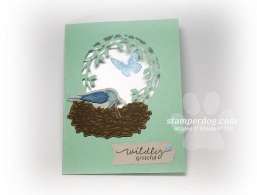 Bird Window Card Redux