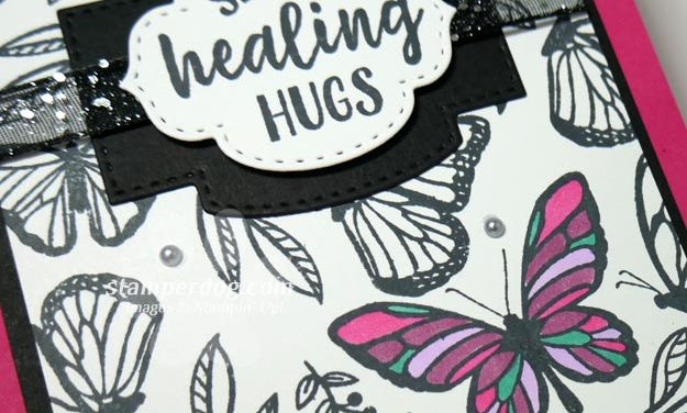 Butterfly Get Well Card