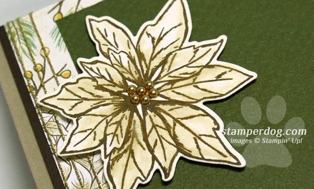 Poinsettia Sympathy Card