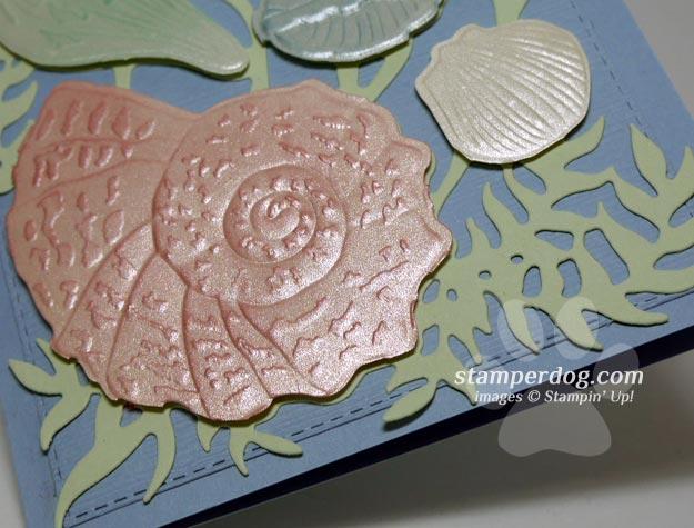 Seashell Card