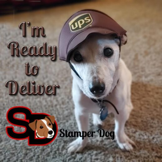 UPS Delivery Dog