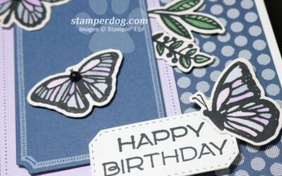 Beautiful Butterfly Birthday Card