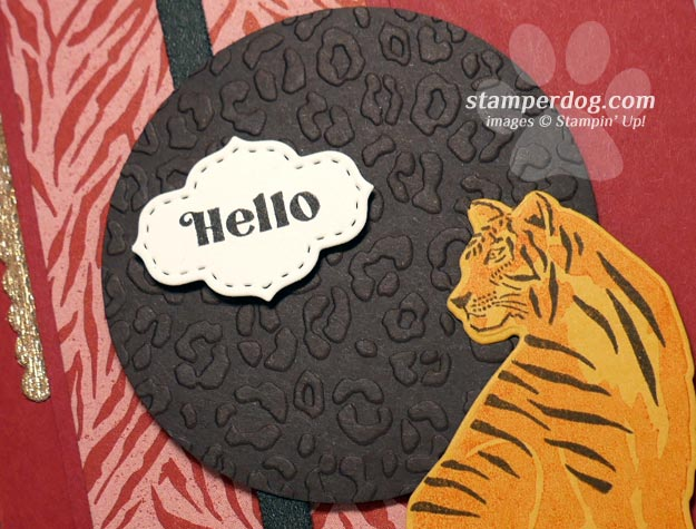 Saying Hello With a Cat Card