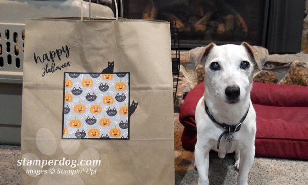 Make a Fancy Trick or Treat Bag