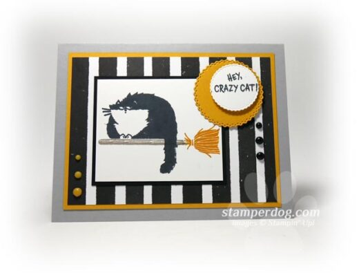 Hello Cat Card