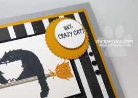 Celebrating Sunday with a Hello Cat Card